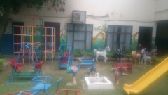 ABCM-Sirhind-Activity-Area