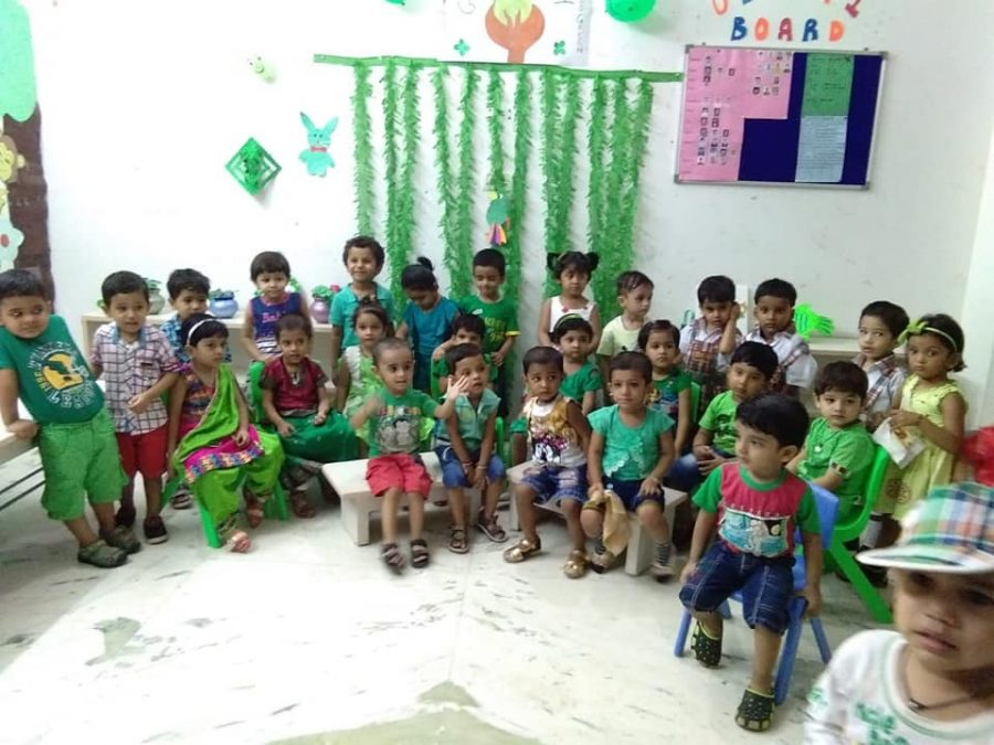 Green Colour day Celebration